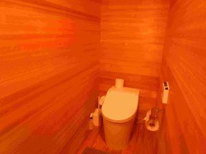 トイレも周囲すべて杉材です