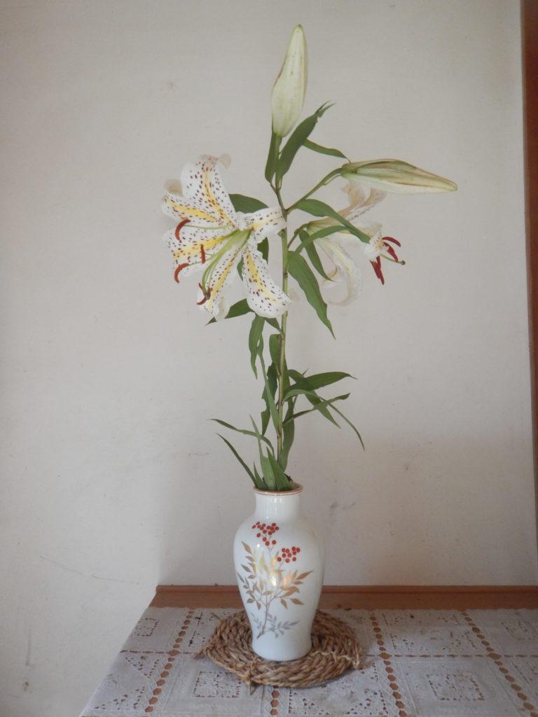 花瓶に生けたヤマユリ
