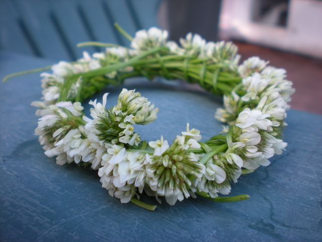 シロツメクサの花飾り